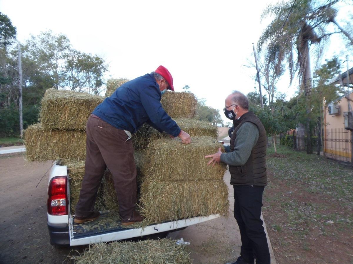 sector ovino y caprino