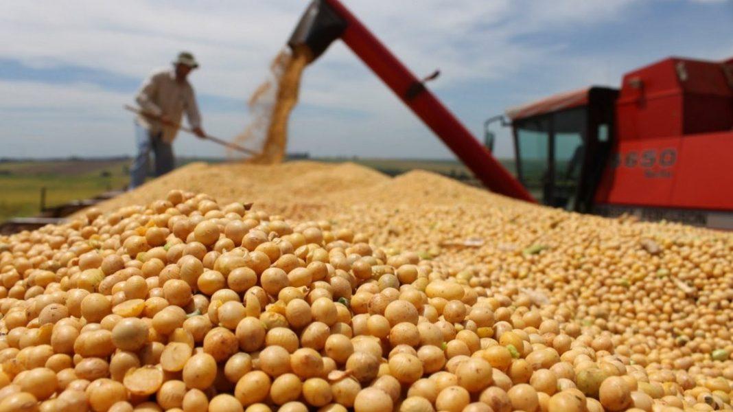 No hubo sorpresas en el USDA y se mantuvo el stock de soja | Edición Rural